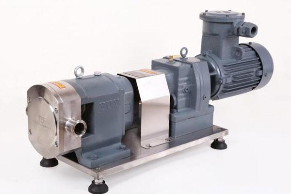 转子泵+防爆装置